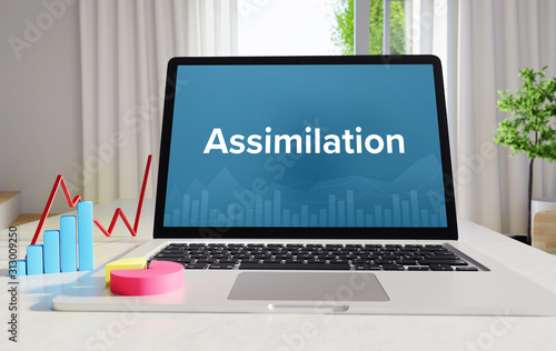 Photo Assimilation – Statistics/Business