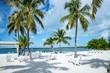 Islamorada Florida Keys Key West Miami USA America Palmen