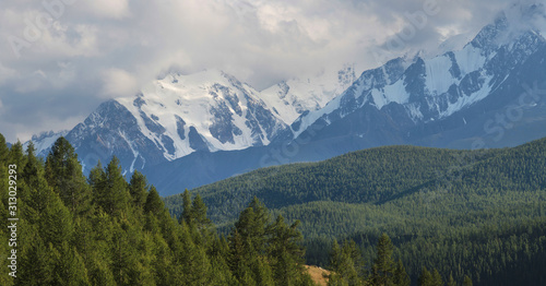Mountain landscape, snow-capped peaks and trees. Summer evening, cloudy sky. #313029293