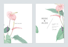 Floral Wedding Invitation Card Template Design, Pink Anthurium Flowers With Leaves On White