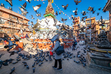Woman Feeds Pigeons At A Buddh...
