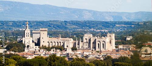 Fototapeta vue sur Avignon