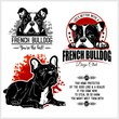 French Bulldog - vector set for t-shirt, logo and template badges