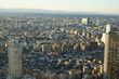 A view from above Tokyo