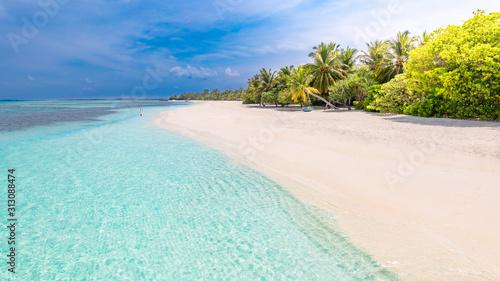 Idyllic summer beach scenery, Maldives island coastline with palm trees over white sand under blue sky
