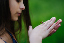 A Little Girl Looks At A Ladybug Spread Her Wings Which Crawls On Her Arm. Children And Nature Concept. Close-up. Soft Focus.