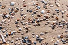 In Holland Am Strand Und An De...