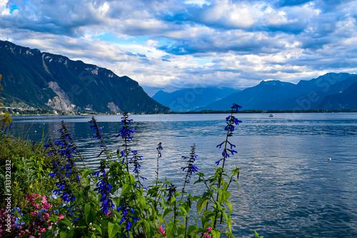widok-na-jezioro-genewskie-i-g
