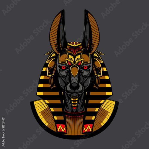 anubis head vector illustration and tshirt design Canvas Print