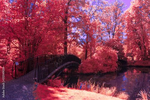 Photo Park in Infrared