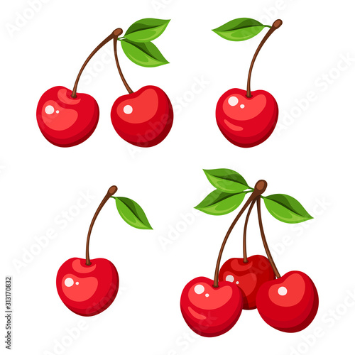 Photo Vector illustration of four cherry berries and bunches of cherry isolated on a white background