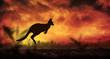 Leinwanddruck Bild - Kangaroo silhouette jumping at sunset
