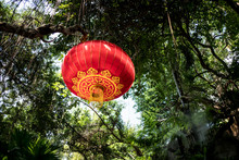 Chinese New Year Red Lanterns Hang On The Tree.