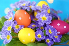 Easter Concept. Easter Motley Eggs In The Flowers Of Primrose Blue On A Bright Blue Background With Golden Bokeh.Holiday Easter Spring Bright Background.Spring Religious Holiday