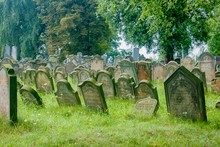 Old Jewish Cemetery With Stone...