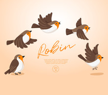 Flying Birds Collection Isolated On Pastel Background : Vector Illustration