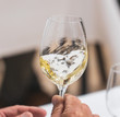 canvas print picture - hand with glass of white wine