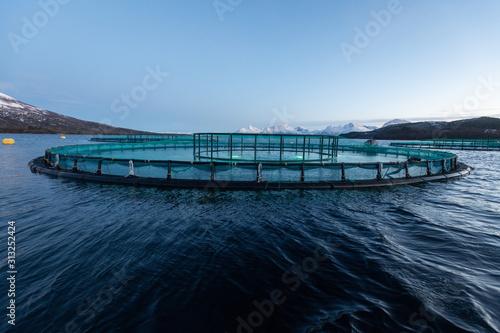 Photo Aquakultur in Norwegen, kontrollierte Aufzucht von Lachsen in Netzgehege im Fjor