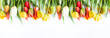 Beautiful celebration background. Bunch of multicolored tulips withe waterdrops on a white background. Copy space, flat lay