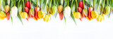 Fototapeta Tulips - Beautiful celebration background. Bunch of multicolored tulips withe waterdrops on a white background. Copy space, flat lay