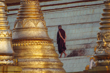 Monk Walking On Gold Temple In...