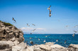 Maritime holiday feeling: Numerous flying seagulls on a stony coast in Greece with a view of the blue sea