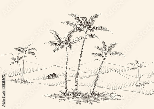 Fotomural Oasis in the desert hand drawing, palm trees, fountain water and a camel in the