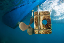 Propeller And Rudder Of Dive P...