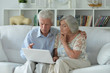 canvas print picture Portrait of senior couple using laptop at home