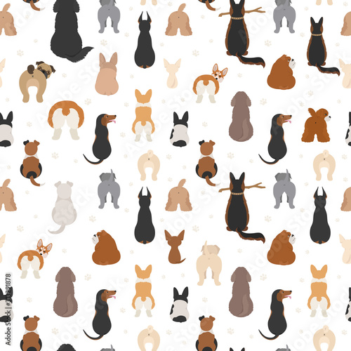 obraz lub plakat Dog poses behind. Dog`s butts. Flat design seamless pattern