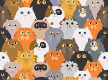 Cat Poster. Cartoon Cat Charac...