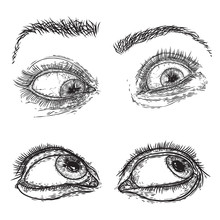 Female And Male Eye And Brow With Lashes Image Set In Different Mood And Directions. Fashion Boy And Girl Vision Design. Ink Hand Drawing For Makeup Look And Studio Salon Or Tattoo Design. Vector.