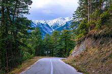 Amazing Landscape On Mount Oly...