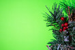 canvas print picture - Christmas decoration with green background for copyspace