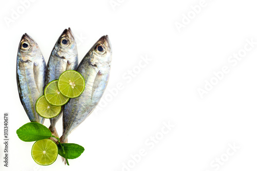 Selar crumenophthalmus ,Bigeye scad ,fish with lemon and leaf isolated on white background,concept cooking background Fototapeta