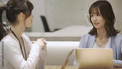 ノートパソコンで仕事をしている二人の女性 Wallpaper Mural