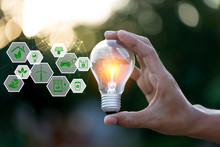 Hand Holding Light Bulb With Icons Energy Sources For Renewable,love The World Concept.