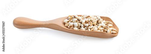 Fototapeta Grains useful of job's tears on wood spoon isolated on white