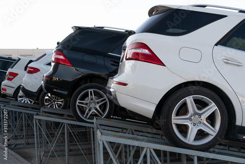 Obraz SUV cars in a row. Used car market. - fototapety do salonu
