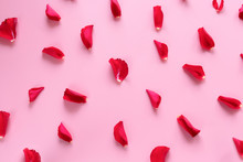 Valentines Day Background: Red Roses Petals Pattern On A Pink Background