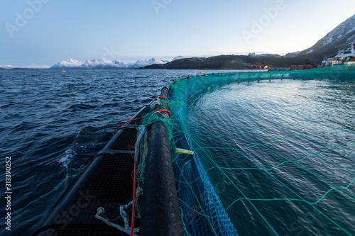 Lachszucht in Norwegen im Netzgehege, kontrollierte Aufzucht im Meerwasser  Fjor Canvas Print