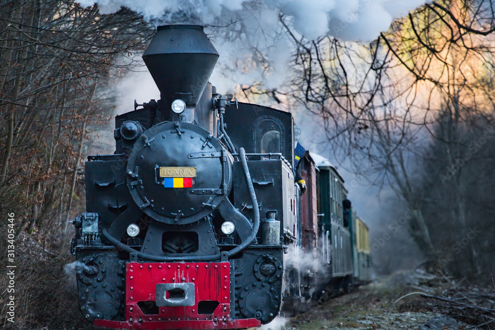 Fototapeta Steam train puffing along the tracks