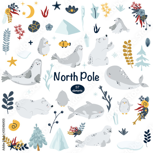 set of isolated north animals and elements - vector illustration, eps Canvas Print