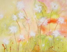 Dandelion Seeds In The Wind. T...
