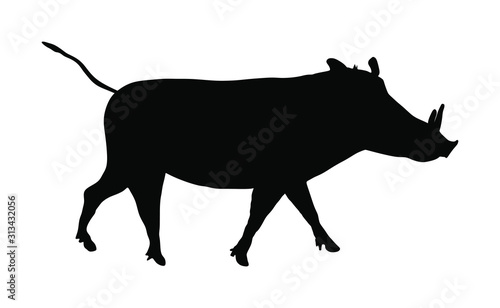 Warthog vector silhouette illustration isolated on white background Wallpaper Mural