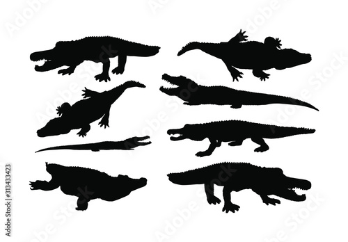 Crocodile vector silhouette on the white background Canvas Print