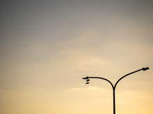 Shoes Hang On An Street Lamp