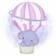 Cute Baby Elephant on Air Balloon