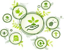 Bio Farming / Organic Agricult...