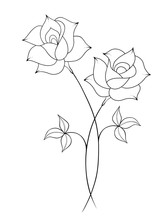 Two Roses Line Art